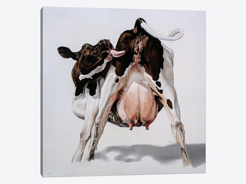 Candy Cow by Clara Bastian 1-piece Canvas Artwork