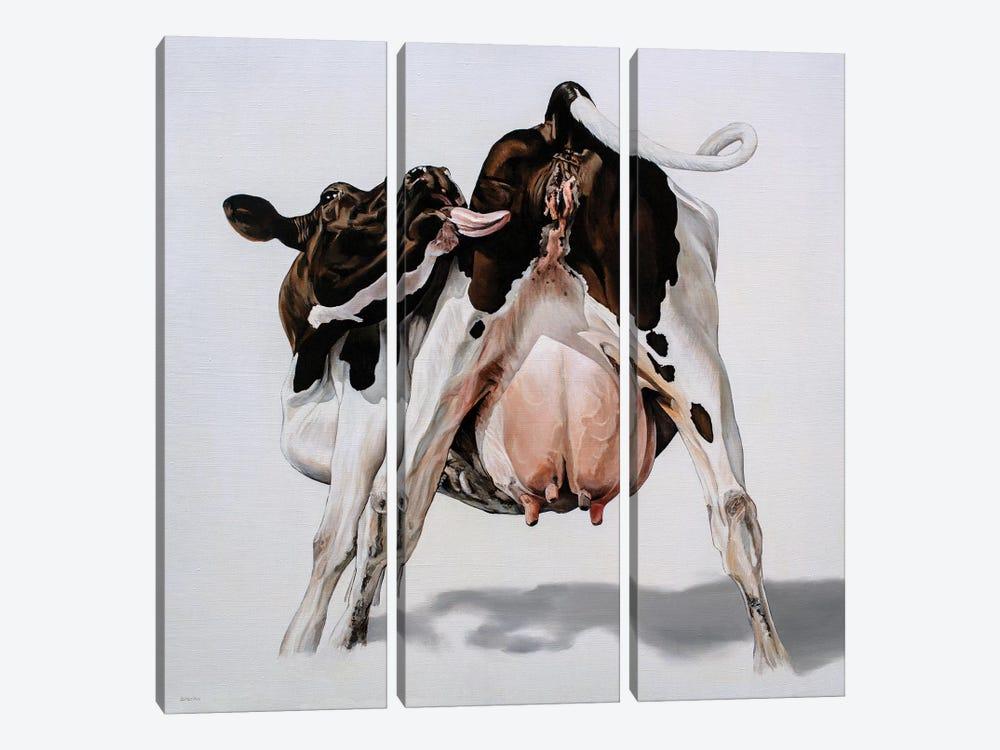 Candy Cow by Clara Bastian 3-piece Canvas Artwork