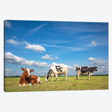 Pastureland Canvas Print #BTN64} by Clara Bastian Canvas Artwork