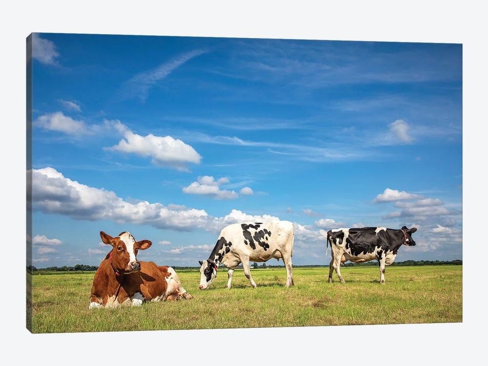 Pastureland by Clara Bastian 1-piece Canvas Art Print
