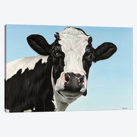 Cow Canvas Print #BTN6} by Clara Bastian Art Print