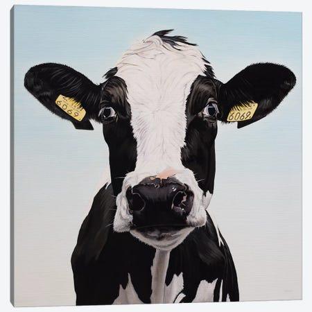 Cow 6069 Canvas Print #BTN8} by Clara Bastian Canvas Art