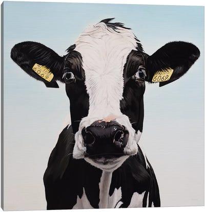 Cow 6069 Canvas Art Print