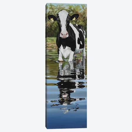 Cow In A Creek Canvas Print #BTN9} by Clara Bastian Canvas Art