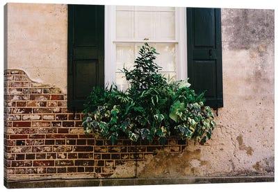 Charleston Walls IX Canvas Art Print