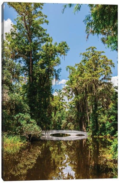 Charleston's Magnolia Plantation V Canvas Art Print