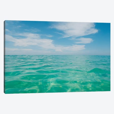 Florida Water III Canvas Print #BTY1095} by Bethany Young Canvas Print