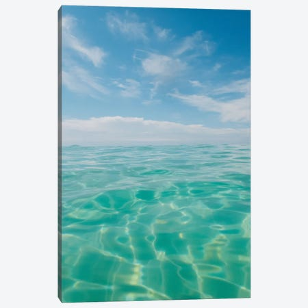 Florida Water IV Canvas Print #BTY1096} by Bethany Young Canvas Art Print
