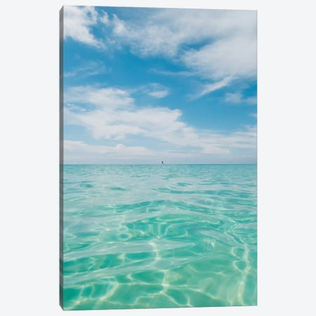 Florida Water V Canvas Print #BTY1097} by Bethany Young Canvas Print