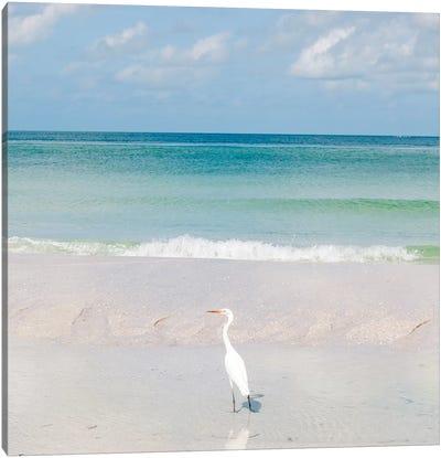 Florida Ocean View VIII Canvas Art Print
