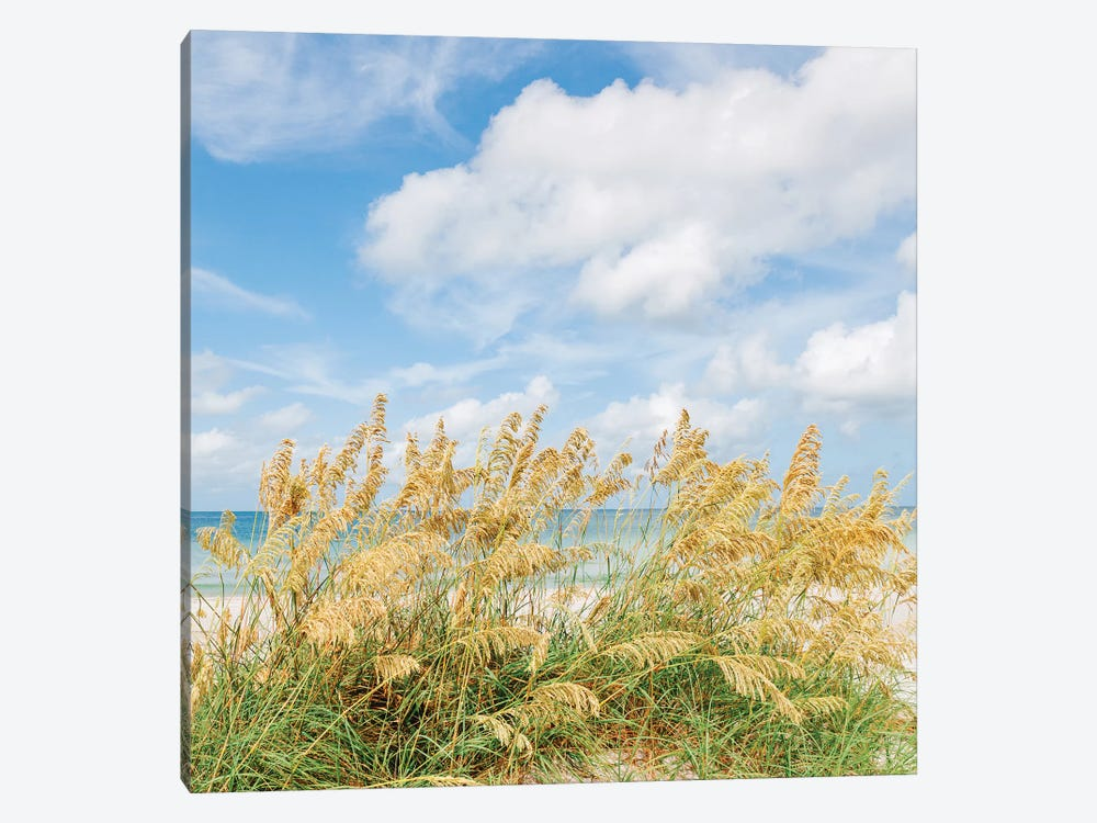 St. Pete Beach II by Bethany Young 1-piece Canvas Wall Art