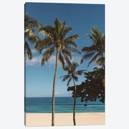 Hawaiian Palms VI Canvas Print #BTY111} by Bethany Young Art Print