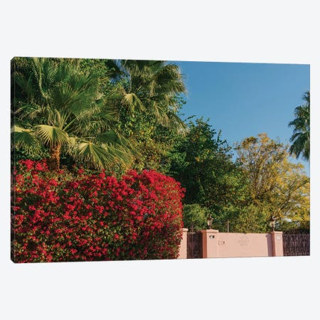 Palm Springs Pink Canvas Print #BTY1137} by Bethany Young Canvas Art