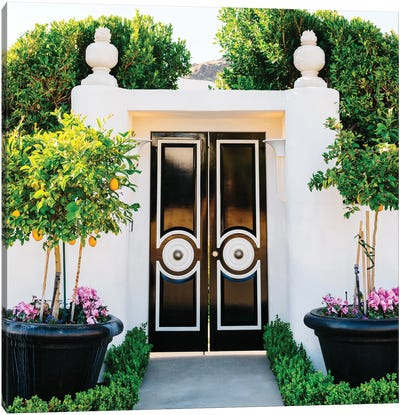 Palm Springs Door Canvas Art Print