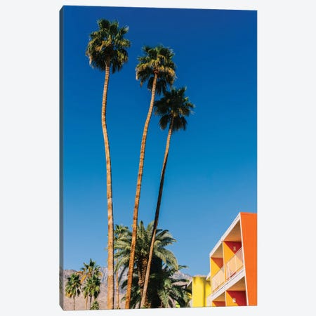 Palm Springs Vibes V Canvas Print #BTY1154} by Bethany Young Canvas Wall Art