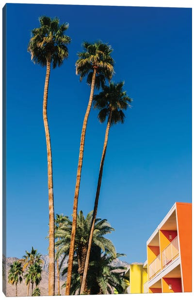 Palm Springs Vibes V Canvas Art Print