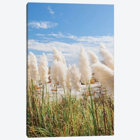 California Beach Day III Canvas Print #BTY1155} by Bethany Young Canvas Art