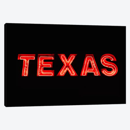 Texas Neon Canvas Print #BTY1192} by Bethany Young Canvas Print
