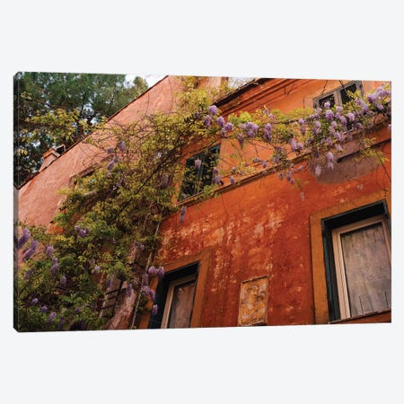Wisteria in Rome III Canvas Print #BTY1295} by Bethany Young Canvas Art Print