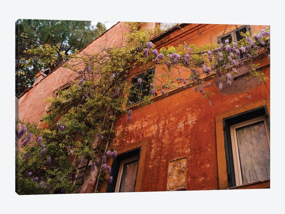 Wisteria in Rome III by Bethany Young 1-piece Canvas Art