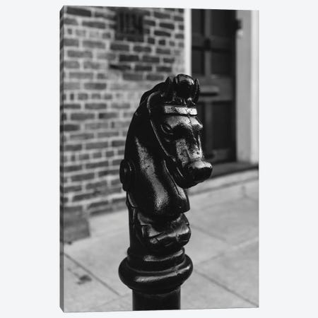 New Orleans Horse Canvas Print #BTY1358} by Bethany Young Canvas Print