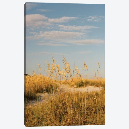 Hilton Head Island II Canvas Print #BTY1361} by Bethany Young Canvas Artwork