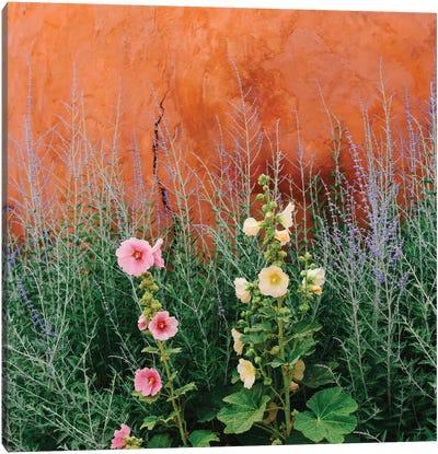 Santa Fe Flowers Canvas Art Print