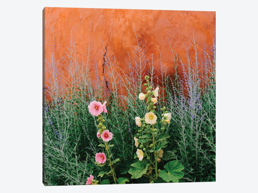 Santa Fe Flowers by Bethany Young 1-piece Canvas Art Print