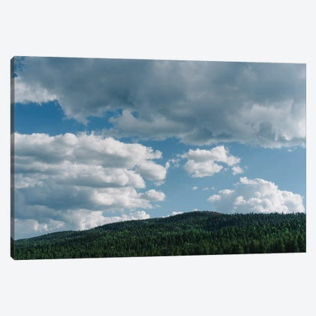 Enchanted Circle Scenic Byway III Canvas Print #BTY1499} by Bethany Young Canvas Wall Art