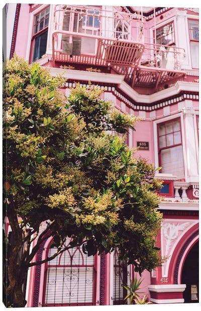 San Francisco Pink II Canvas Art Print