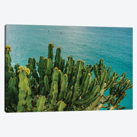 Amalfi Coast Cactus I Canvas Print #BTY195} by Bethany Young Canvas Artwork