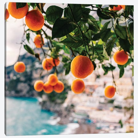Amalfi Coast Oranges I Canvas Print #BTY242} by Bethany Young Canvas Print