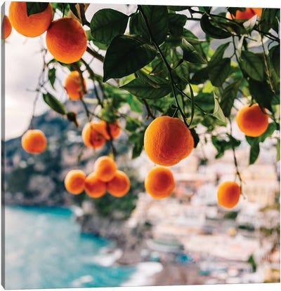 Amalfi Coast Oranges I Canvas Art Print