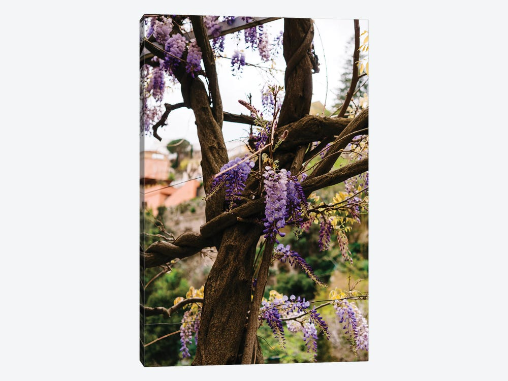Positano Blooms VI by Bethany Young 1-piece Art Print