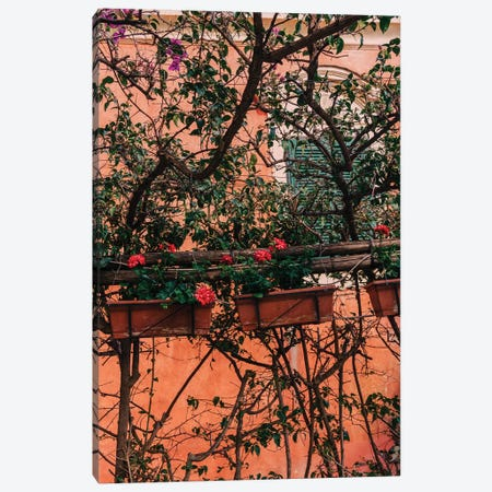 Positano Blooms XI Canvas Print #BTY277} by Bethany Young Art Print