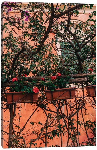 Positano Blooms XI Canvas Art Print