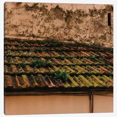Positano VI Canvas Print #BTY322} by Bethany Young Canvas Artwork