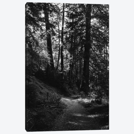 Big Sur Hike Canvas Print #BTY428} by Bethany Young Art Print