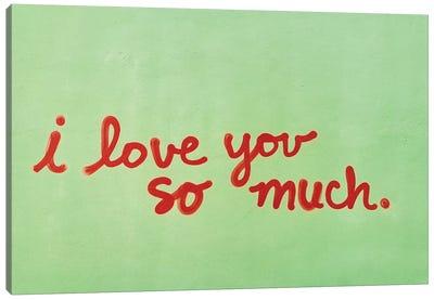 I Love You So Much II Canvas Art Print