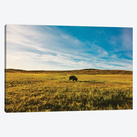 King of the Hill Canvas Print #BTY49} by Bethany Young Canvas Art