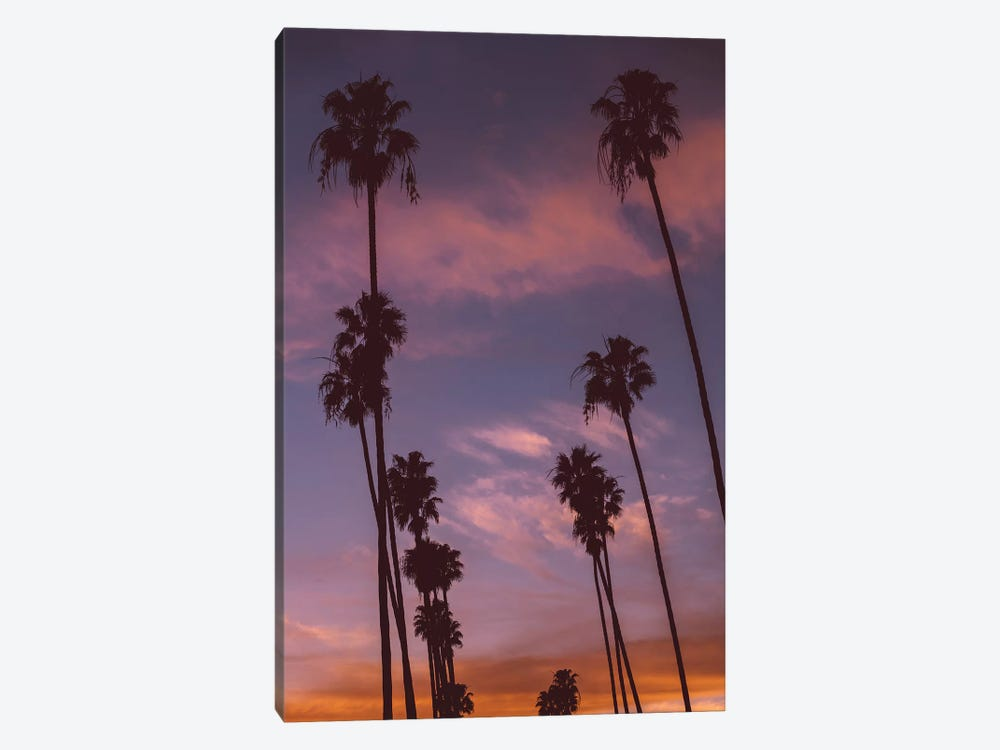 LA Sunset by Bethany Young 1-piece Canvas Wall Art