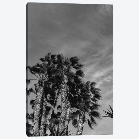 Monochrome California Sky 3-Piece Canvas #BTY582} by Bethany Young Canvas Artwork