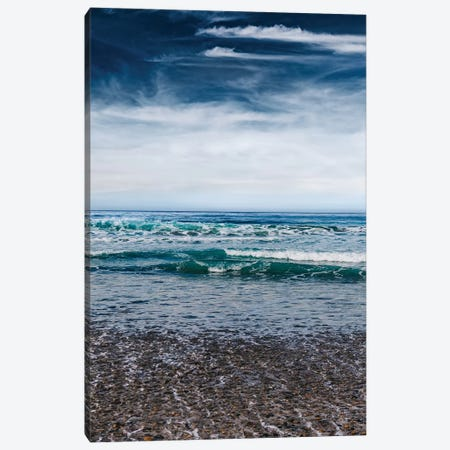 Torrey Pines San Diego III Canvas Print #BTY590} by Bethany Young Canvas Print