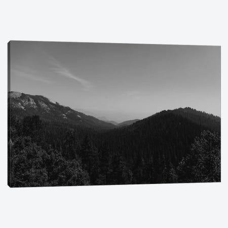 Sequoia National Park II Canvas Print #BTY609} by Bethany Young Canvas Art Print