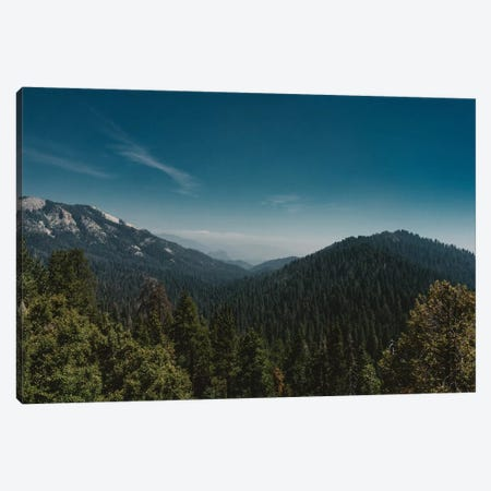 Sequoia National Park Canvas Print #BTY617} by Bethany Young Canvas Print