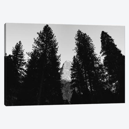 Yosemite National Park VII Canvas Print #BTY675} by Bethany Young Canvas Art Print