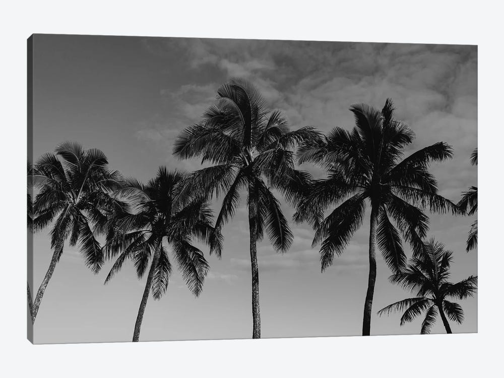 Hawaiian Palms by Bethany Young 1-piece Art Print