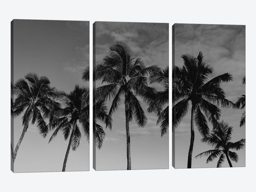 Hawaiian Palms by Bethany Young 3-piece Canvas Print