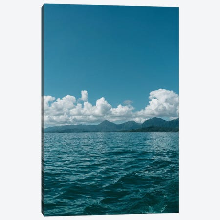 Hawaiian View Canvas Print #BTY714} by Bethany Young Canvas Artwork