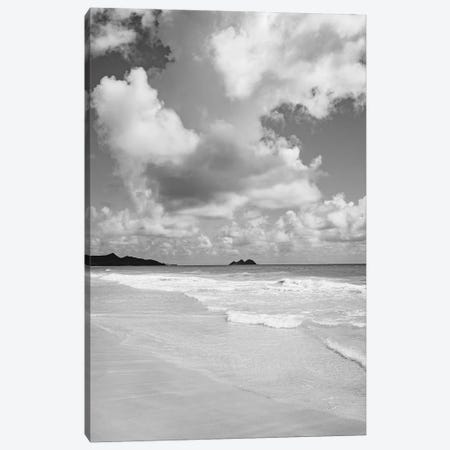 Monochrome Hawaii 3-Piece Canvas #BTY720} by Bethany Young Canvas Art
